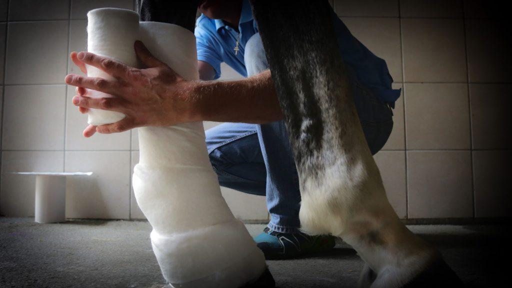 Pferdeklinik Salzhofen - Leistungen - Orthopädie - Verband anlegen